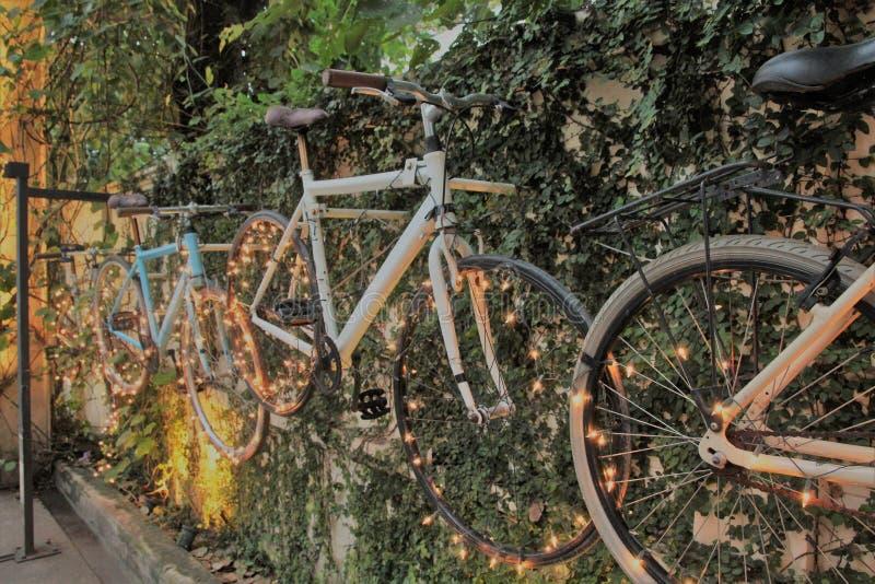 Bicicleta con la iluminación hermosa fotografía de archivo libre de regalías