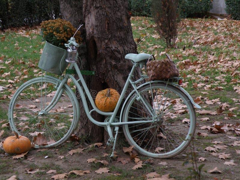 A bicicleta da abóbora fotografia de stock