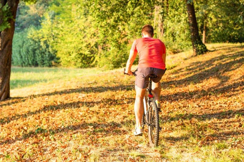 Bicicleta da equitação do homem novo imagem de stock