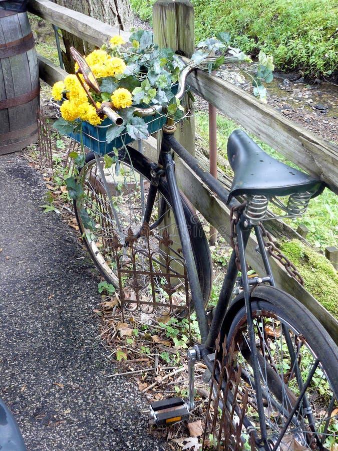 Bicicleta da flor foto de stock