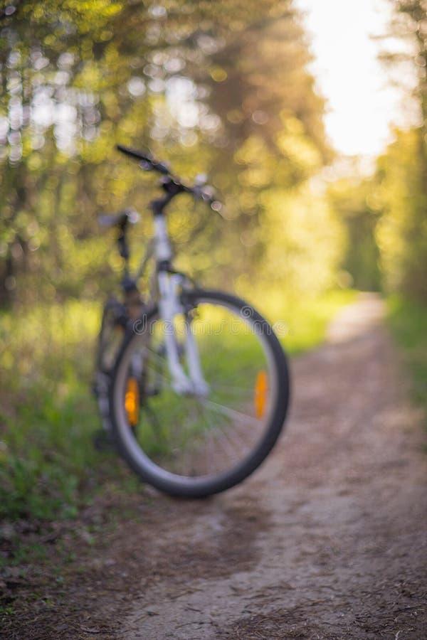 Bicicleta de MTB no trajeto de floresta estreito imagens de stock