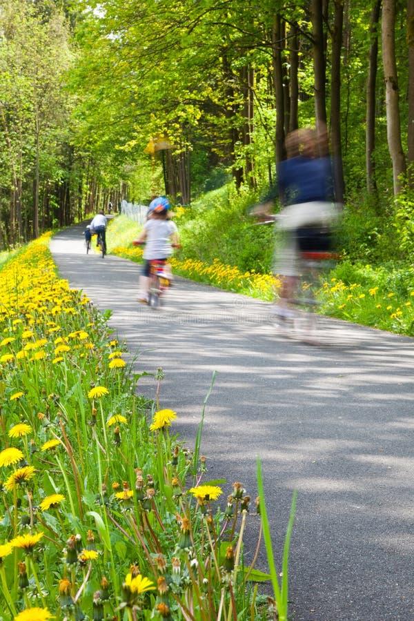 Bicicleta del montar a caballo de la familia en el parque fotografía de archivo