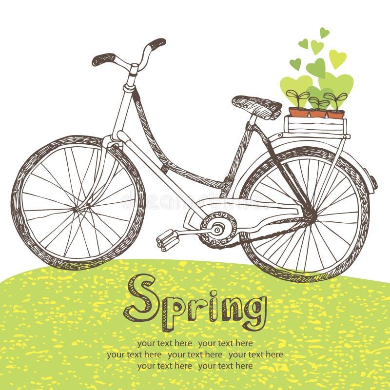 Bicicleta del vintage con los almácigos de la primavera ilustración del vector