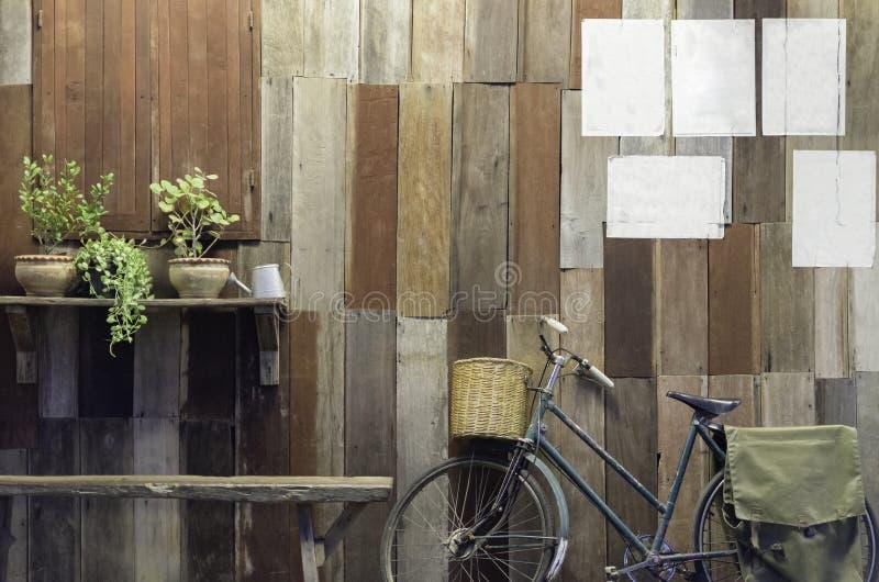 Bicicleta del vintage y pequeño árbol en viejo fondo de madera de la pared imagen de archivo libre de regalías