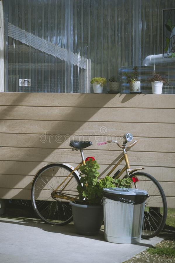 Bicicleta do vintage na parede de madeira da casa do vintage fotografia de stock royalty free