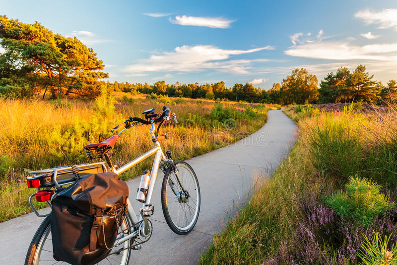 Bicicleta eléctrica en parque nacional holandés el Veluwe imágenes de archivo libres de regalías