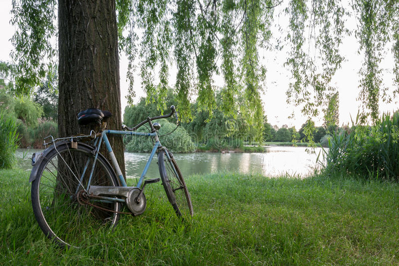 Bicicleta em um jardim italiano imagem de stock