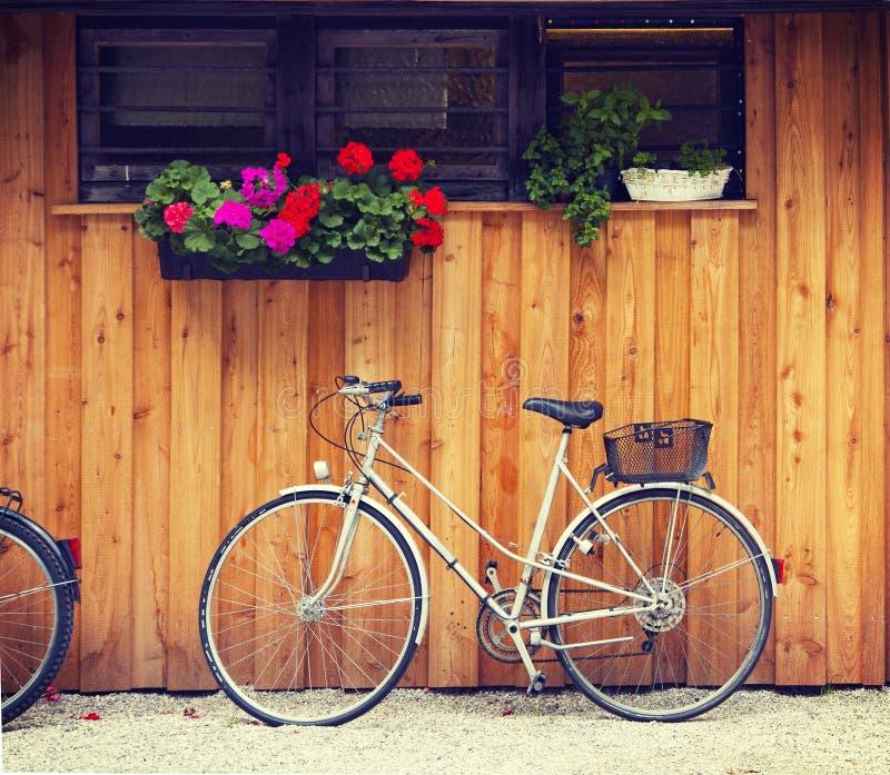 Bicicleta en patio trasero con los geranios imagen de archivo libre de regalías