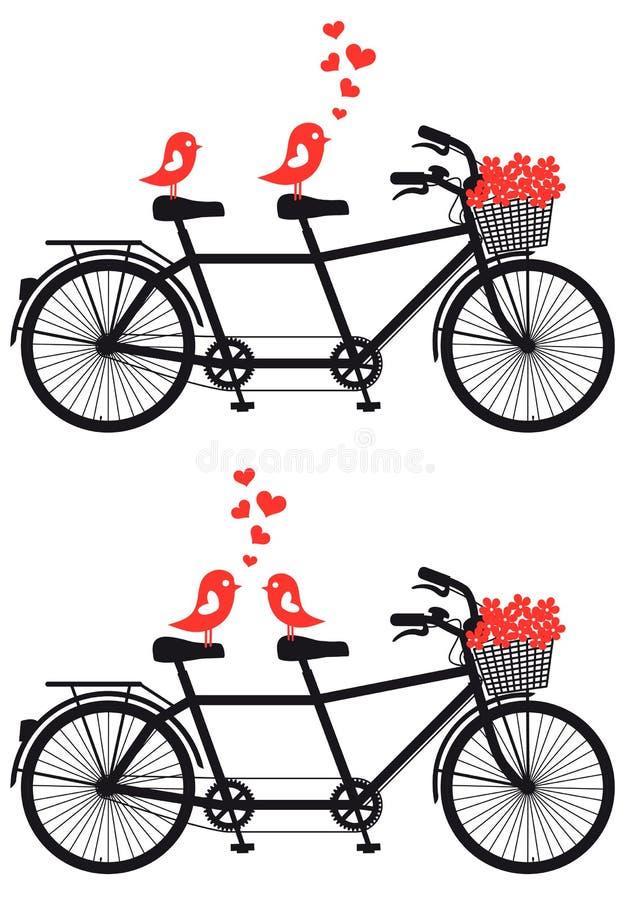Bicicleta en tándem con los pájaros del amor, vector ilustración del vector