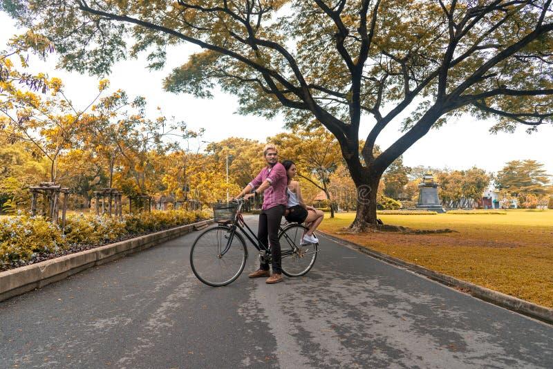 Bicicleta feliz da equitação dos pares no parque foto de stock