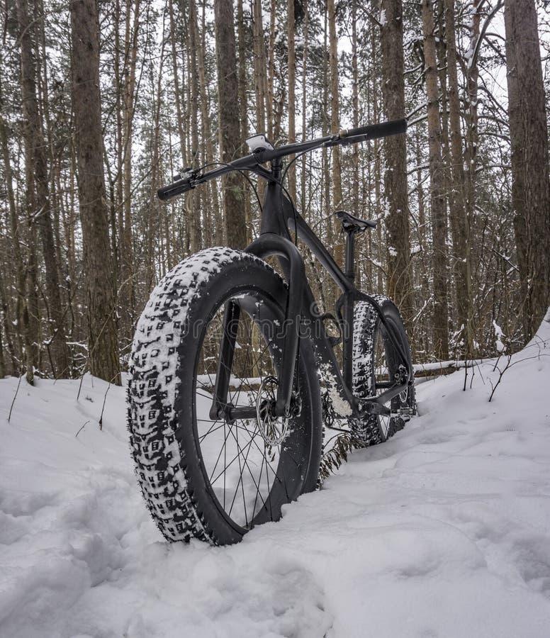 Bicicleta gorda na floresta nevado imagem de stock royalty free