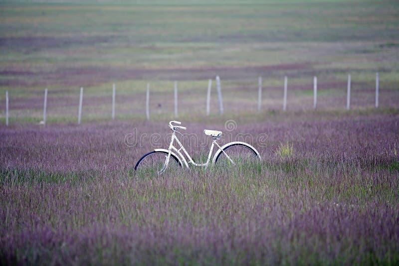 Bicicleta na região de Magallanes, o Chile do sul de Acient foto de stock