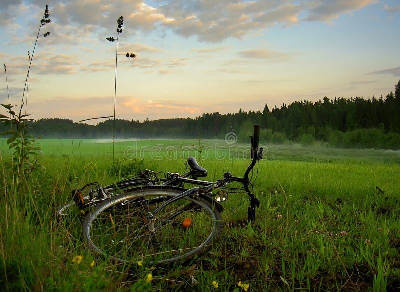 Bicicleta no campo foto de stock royalty free