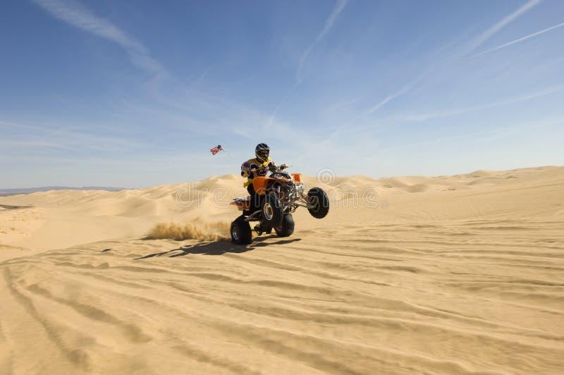 Bicicleta Rider Doing Wheelie In Desert do quadrilátero imagem de stock