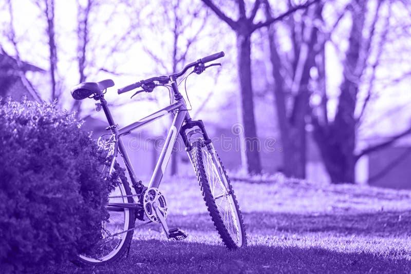 Bicicleta ultravioleta en el parque en un día de primavera brillante del verano al aire libre imagenes de archivo