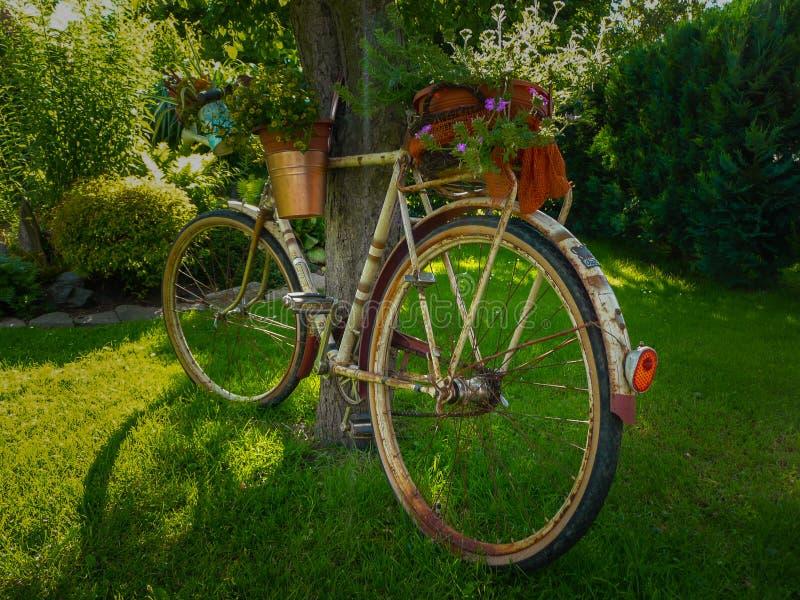 Bicicleta velha fotos de stock