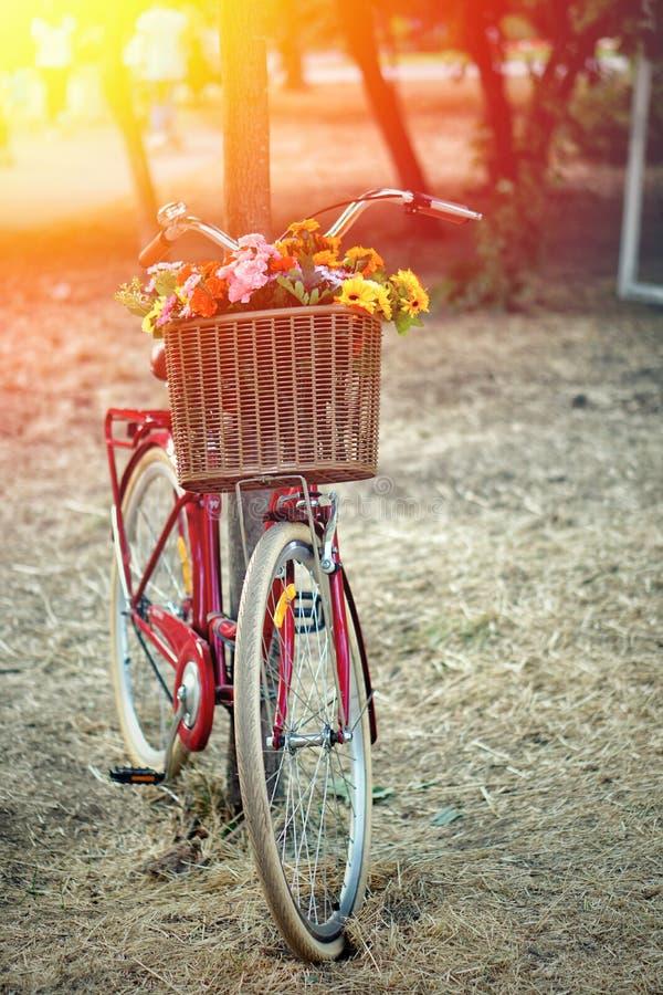Bicicleta vermelha retro no jardim com uma cesta das flores foto de stock