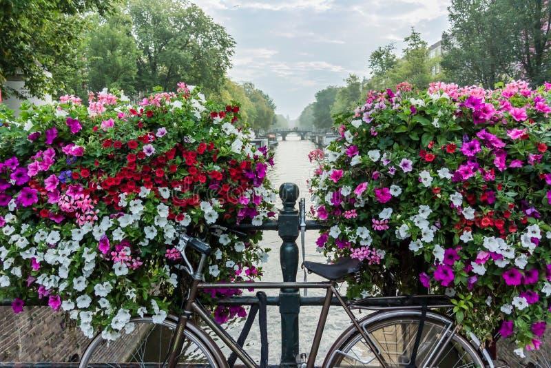 Bicicleta y flores sobre el canal en Amsterdam fotografía de archivo libre de regalías