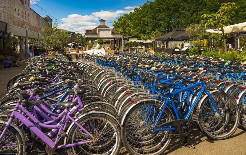 Bicicletas alugado para o aluguer em Londres fotografia de stock royalty free