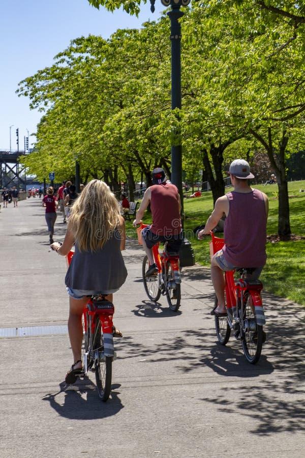 Bicicletas alugados de montada ao lado do rio de Willamette em Portland Oregon foto de stock