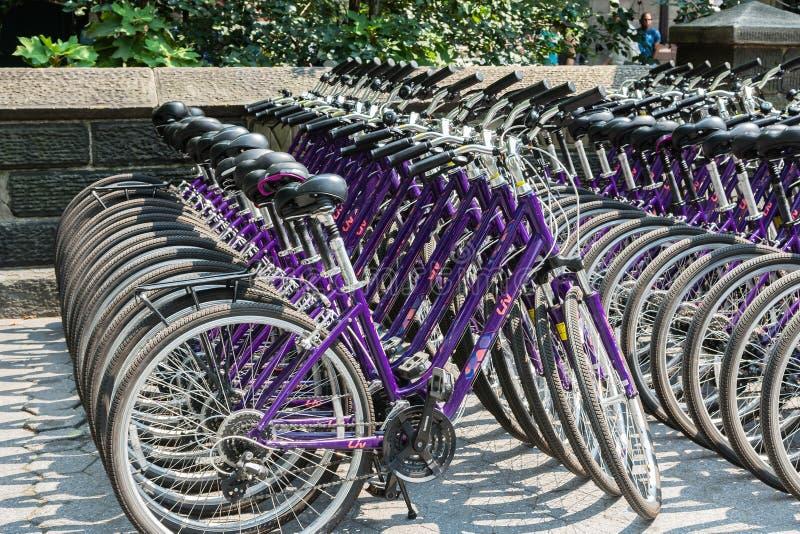 Bicicletas da cidade para o aluguer fotografia de stock