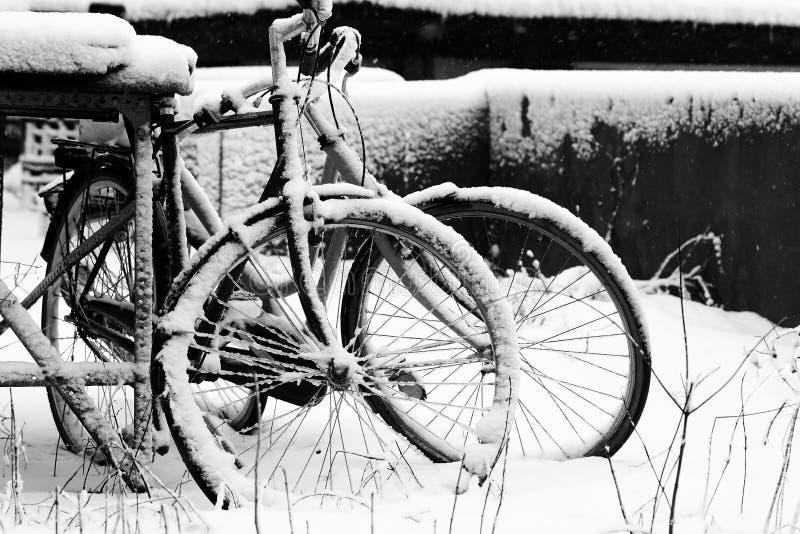 Bicicletas do inverno imagem de stock royalty free
