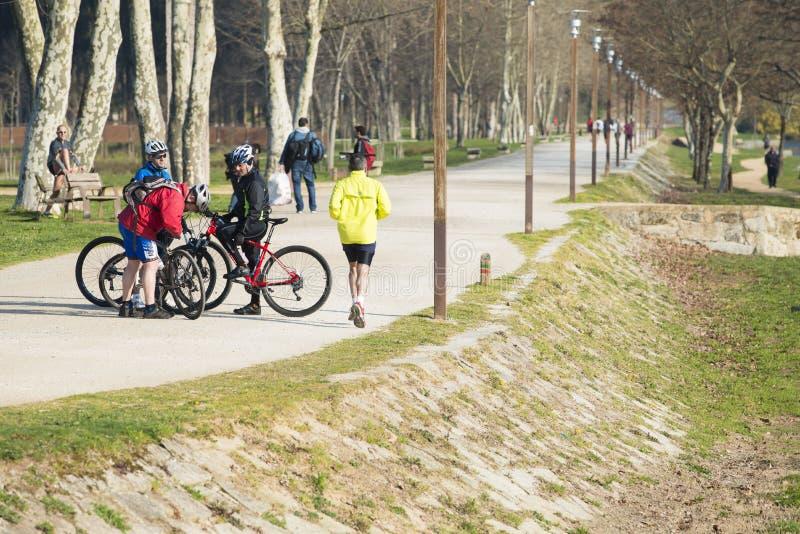 Bicicletas e esporte imagem de stock