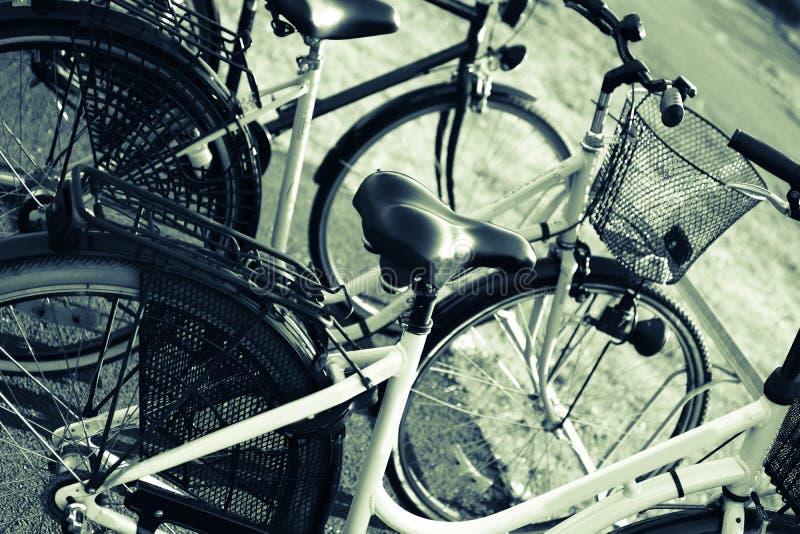 Bicicletas em cremalheiras da bicicleta fotos de stock royalty free