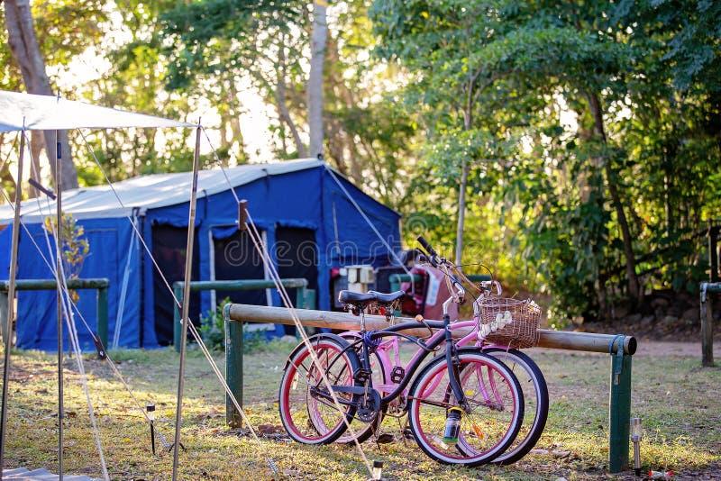 Bicicletas em um local de acampamento fotografia de stock royalty free