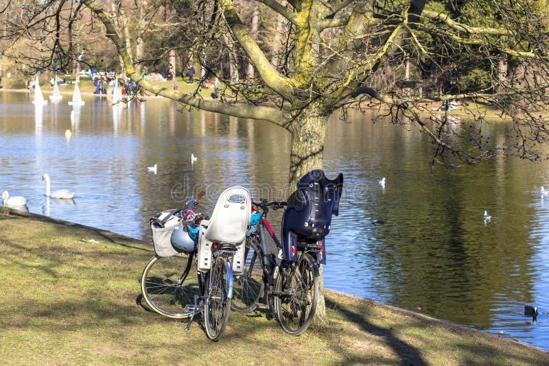 Bicicletas en el parque por la charca en la cual los pájaros flotan Gente en los otros veleros modelo laterales del lanzamiento imagen de archivo libre de regalías