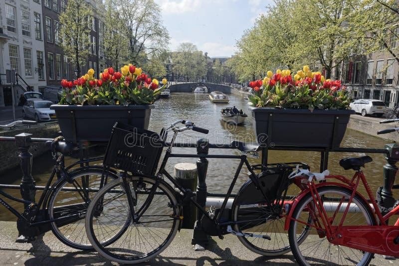 Bicicletas estacionadas na ponte em Amsterdão fotografia de stock royalty free