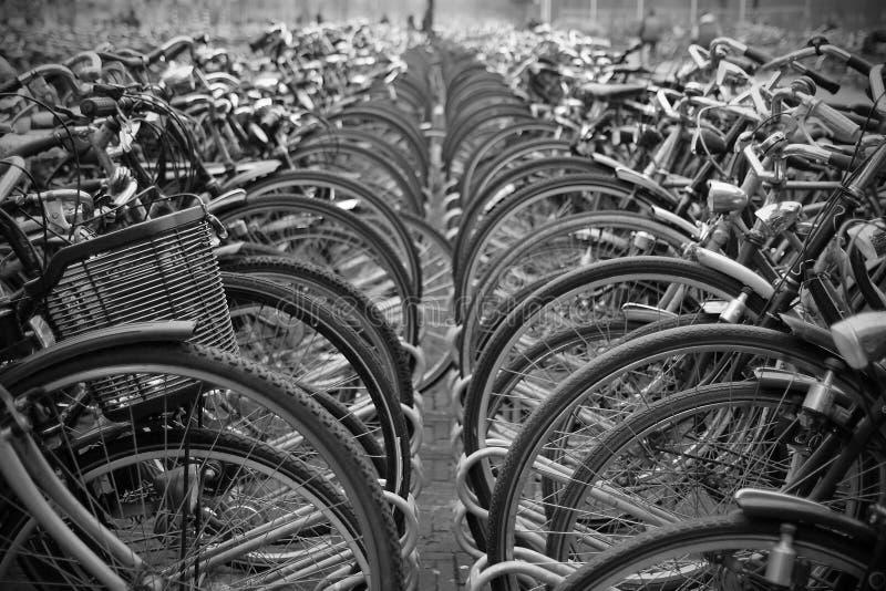 Download Bicicletas Estacionadas Nas Fileiras. Foto de Stock - Imagem de preto, d0: 16870604