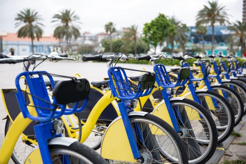 Bicicletas para o aluguel, estacionadas em um parque fotos de stock royalty free
