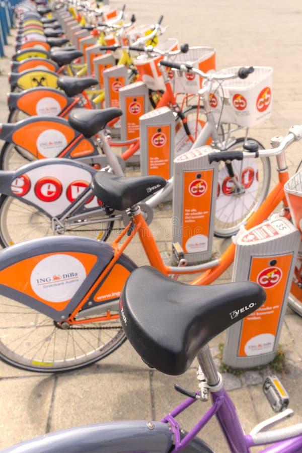 Bicicletas para o aluguer imagem de stock