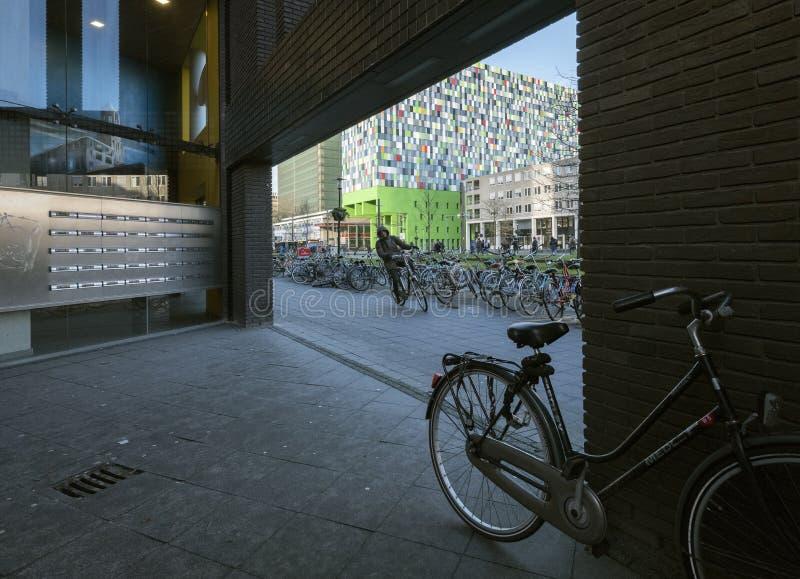 Bicicletas para o transporte do estudante no campus universitário de uithof perto de utrecht em holland imagem de stock royalty free