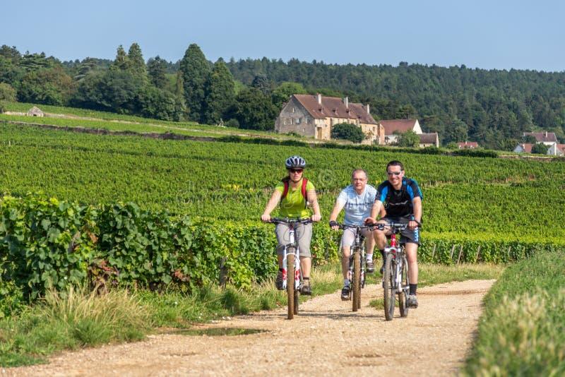 Bicicletas que montan en Borgoña, Francia imagenes de archivo