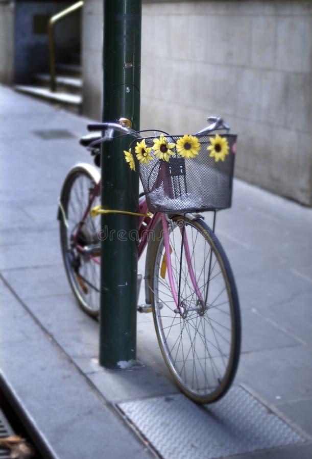 Bicicletta concatenata al palo fotografie stock libere da diritti