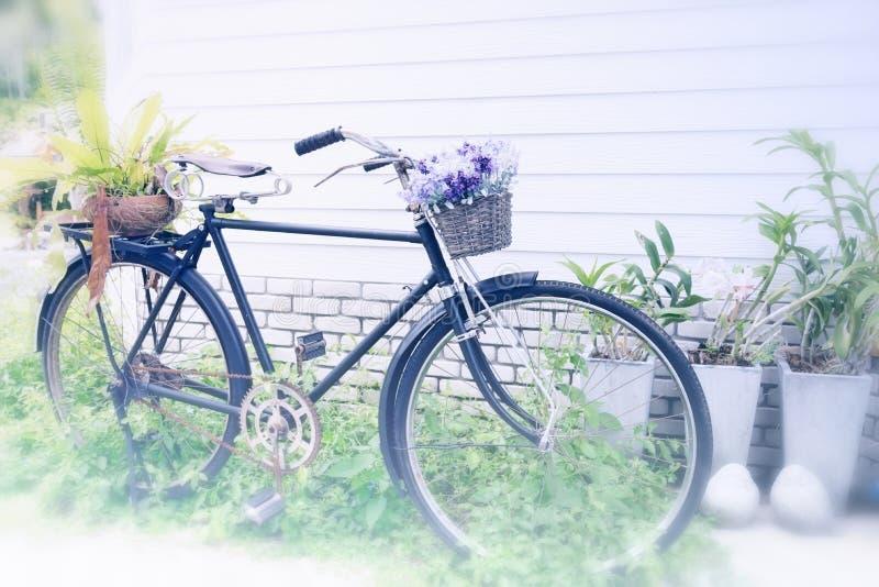 Bicicletta d'annata utilizzata per una decorazione del giardino come posto per il flo fotografia stock