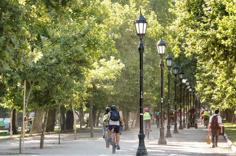 Bicicletta di guida della gente nel parco forestale, il parco urbano più tradizionale nella città fotografia stock libera da diritti