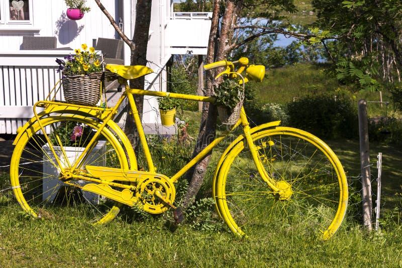 Bicicletta gialla in un giardino nel Eggum fotografia stock