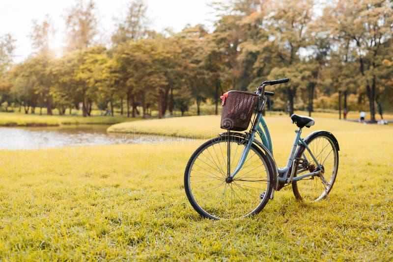 Bicicletta nel parco di autunno Concetto di attivit? e di sport Rilassi e concetto di attivit? Tema della natura e di svago Tema  fotografia stock libera da diritti