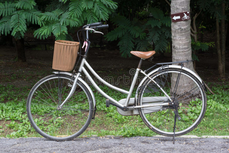 Bicicletta nella sosta immagini stock libere da diritti