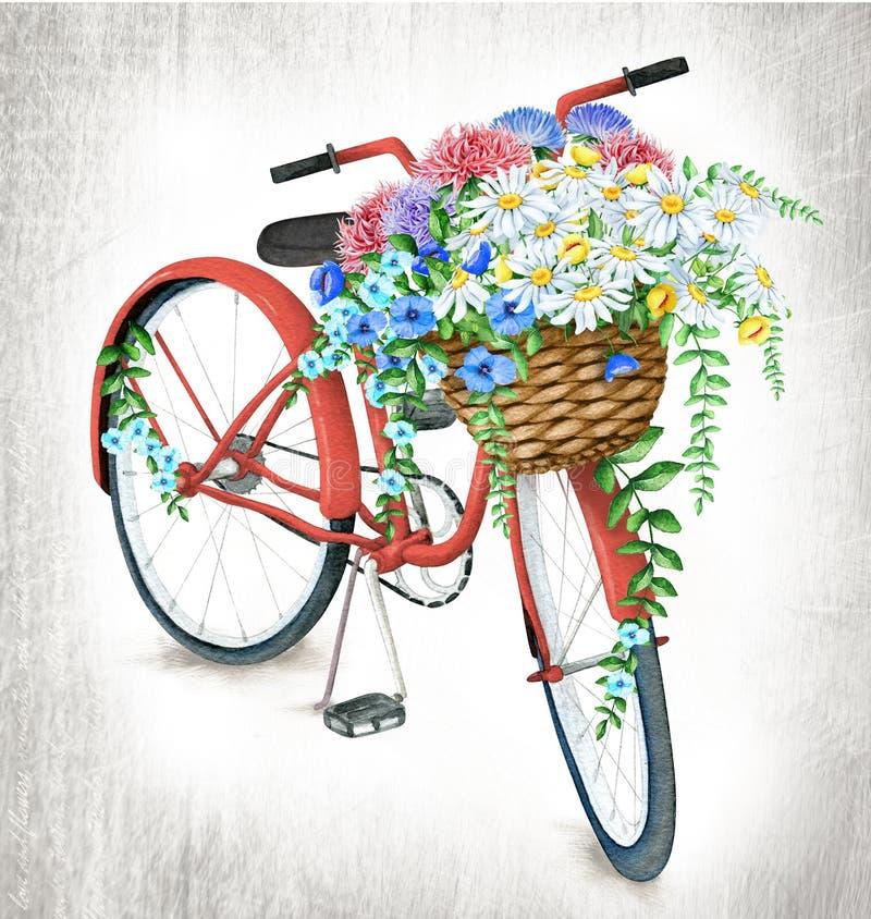 Bicicletta rossa dell'acquerello con il canestro del fiore illustrazione di stock
