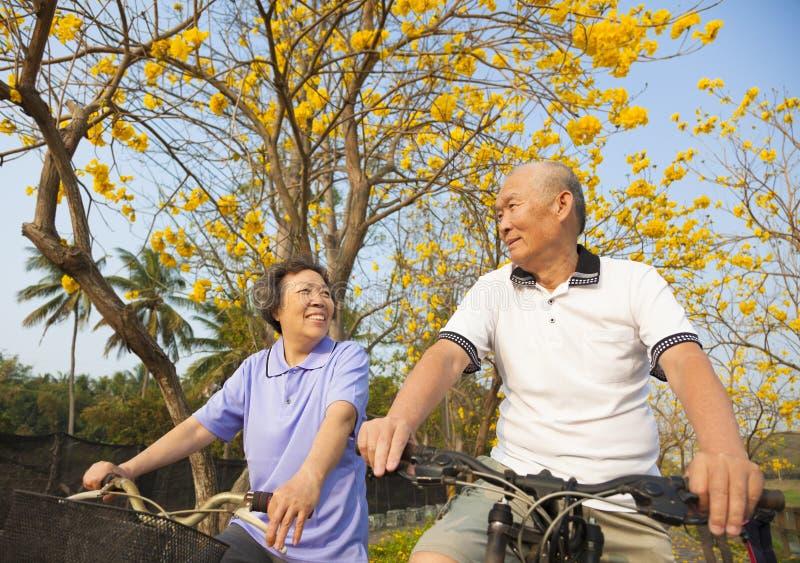 bicicletta senior di guida delle coppie nel parco fotografia stock