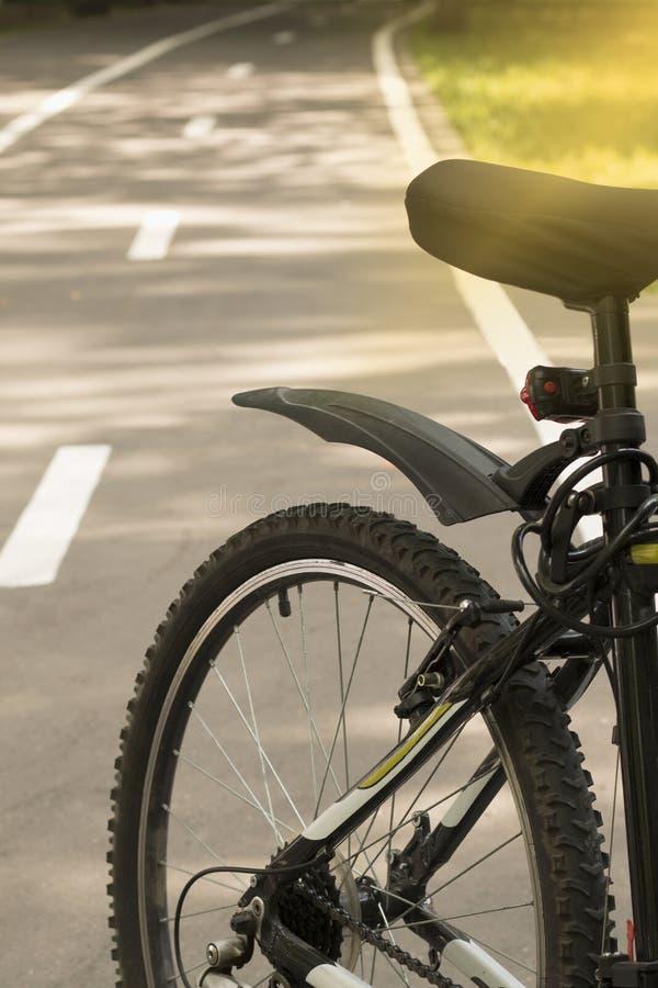 Bicicletta su un vicolo della bici nella foresta con i raggi di sole fotografia stock