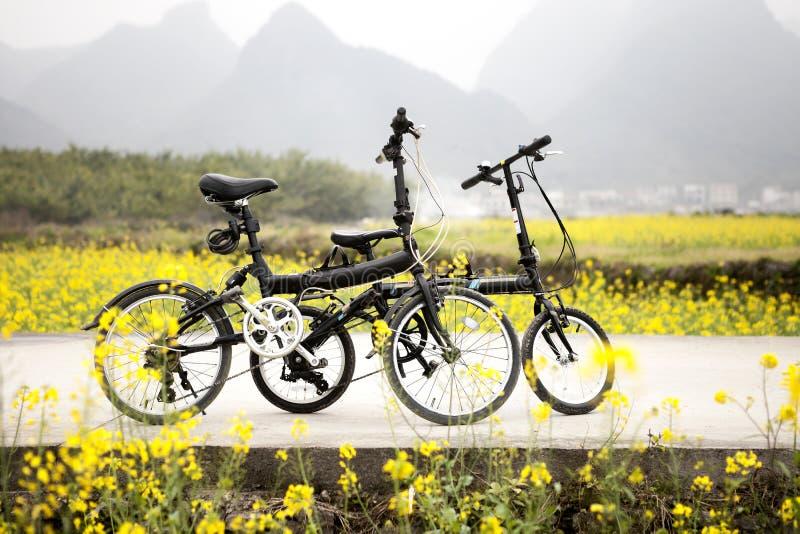 Biciclette all'aperto fotografia stock