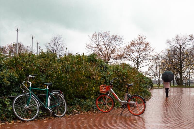 Biciclette nel parco di autunno senza gente il giorno piovoso su fondo della ragazza con l'ombrello immagine stock