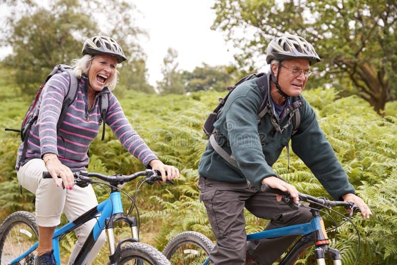 Bicis de montaña mayores del montar a caballo de los pares en el campo durante una acampada, vista lateral, cierre para arriba imagenes de archivo
