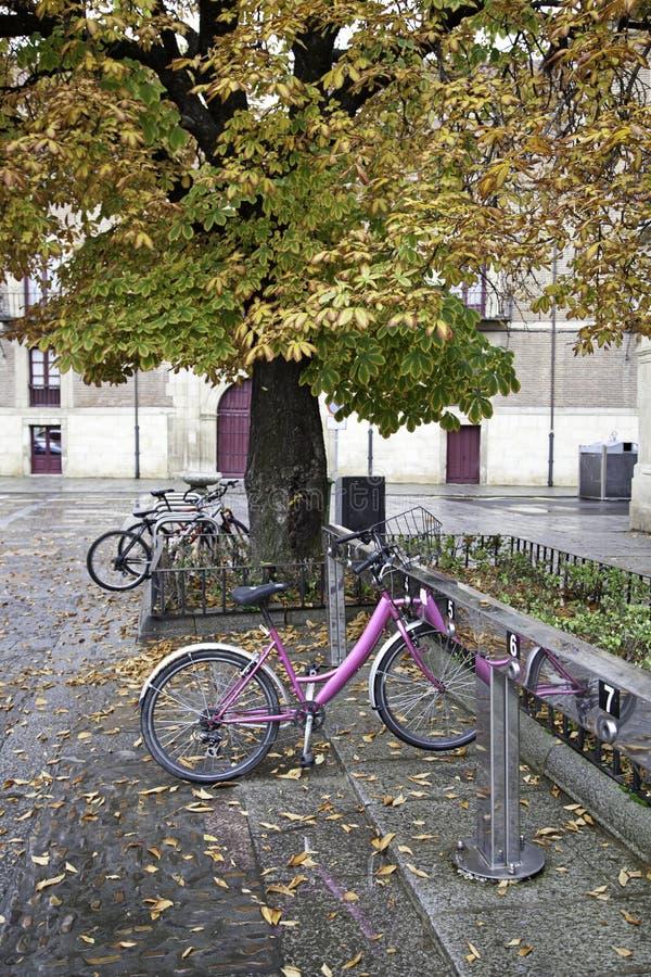 Bicis En Campus Imágenes de archivo libres de regalías