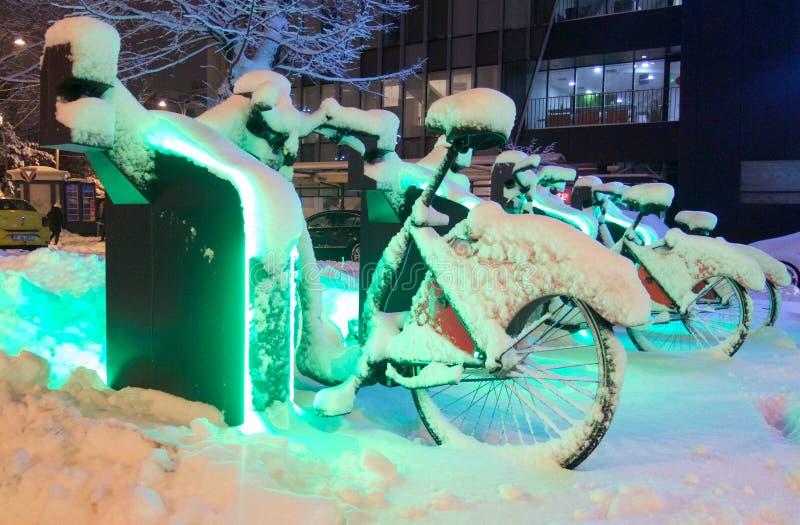 Bicis para los muñecos de nieve en una noche verde foto de archivo